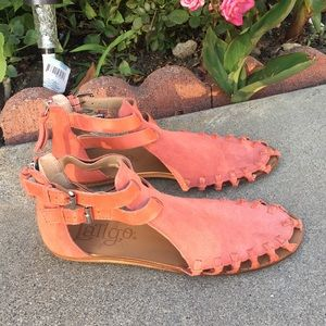 Latigo beautiful summer sandals